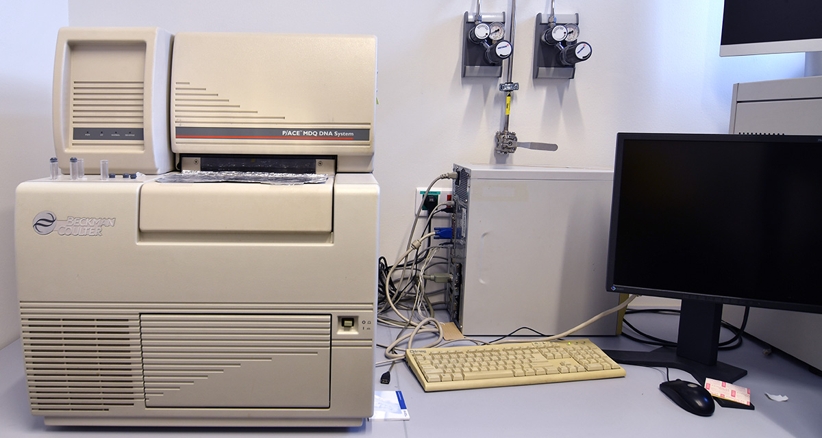 Capillary Electrophoretic Analyzer Beckman Coulter P/ACE MDQ